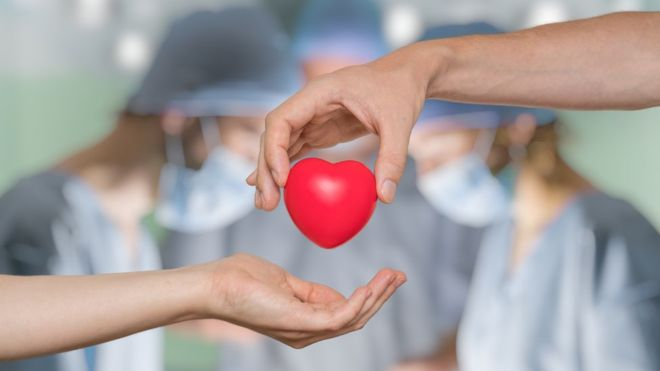 En el primer cuatrimestre del año se realizaron 155 trasplantes más que en 2018 | Argentina.gob.ar