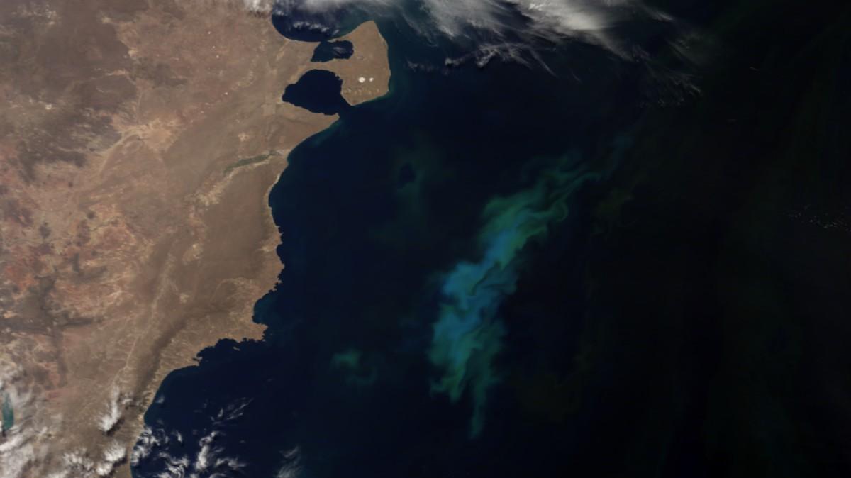 29 de diciembre de 1966: fue promulgado el decreto Ley N° 17.094 de extensión del mar argentino hasta 200 millas